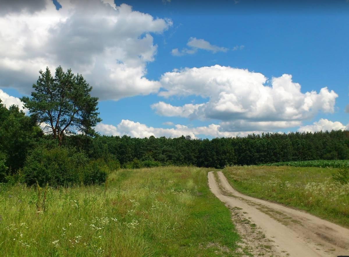 Продам земельный участок 7,2 га с. Зозули 1-я лес 600м Одесская трасса рядом Хлепча Большая Султановка Застугна