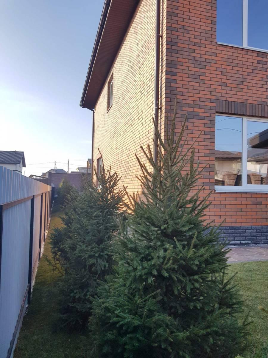 Продам дом 210 м2 с. Софиевская Борщаговка 1 км Петропавловская Борщаговка