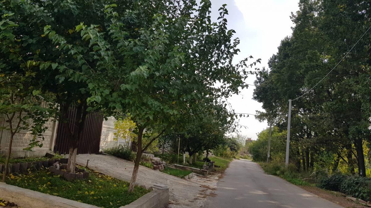 Продам 465 м2 дом 1-я лесопосадка с. Лесники рядом Хотов Чапаевка Козин Феофания