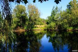 Продам 2 га ОСГ с озером на участке в с.Хотяновка под коммерческую недвижимость
